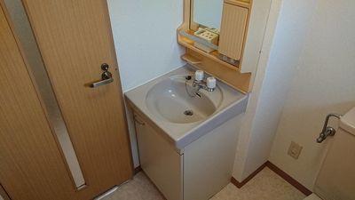 洗面台も大きめの物が付いているので使い易い