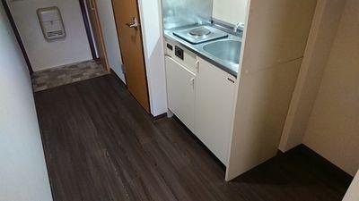 キッチンスペースも広くて電気コンロ仕様です