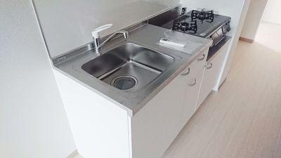 流しも広めで調理スペースもキッチリあります。