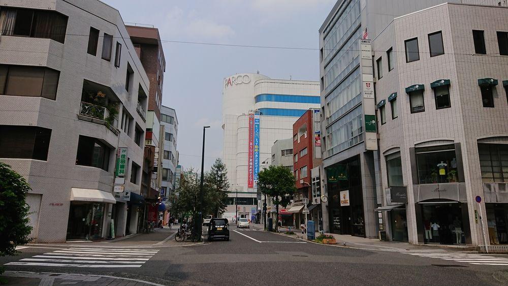 広島並木通り|広島県広島市中区三川町
